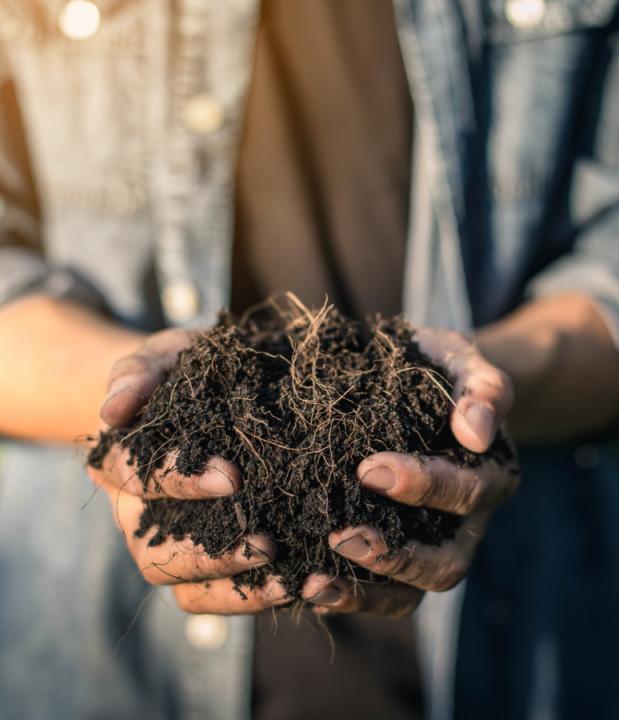 Buy Compost Online | BARK UK Online